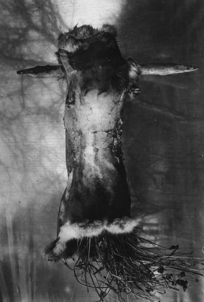 Oskaras II 2002, 30x20 cm