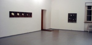 Eglės Karpavičiūtės ekspozicija.