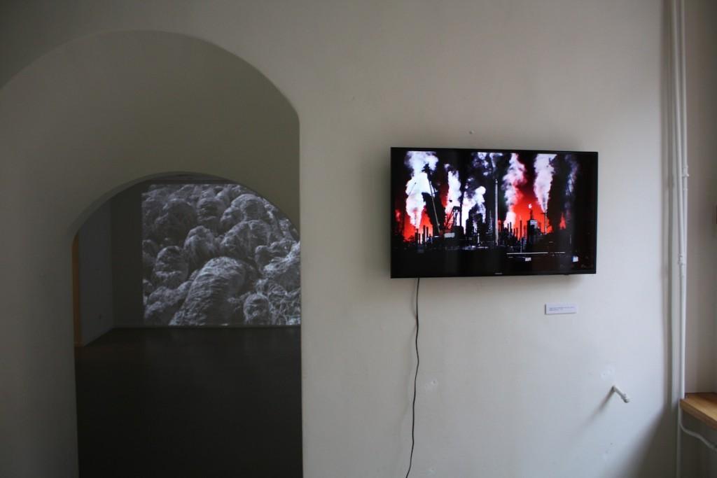 Rimas_Sakalauskas_Sesija_Session_Meno_Nisa_gallery (21)